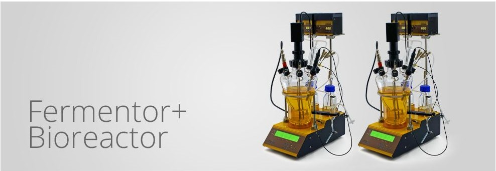 Bioreactor for cell culture and fermentation